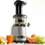 Omega Charcoal VERTICAL MASTICATING JUICER-HD/ FLAP